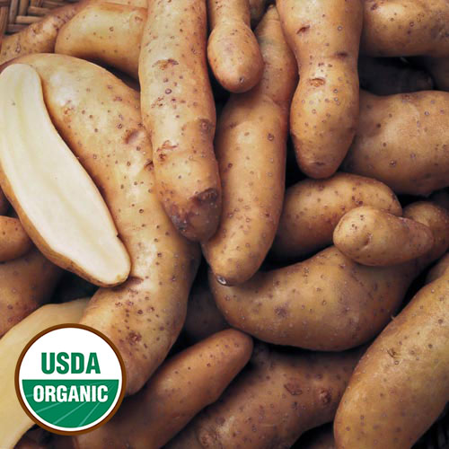 Heirloom & Organic Seed Potatoes