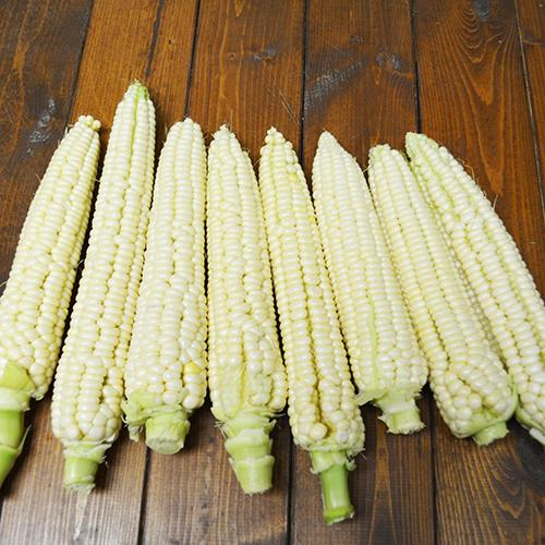 Aunt Mary's Corn