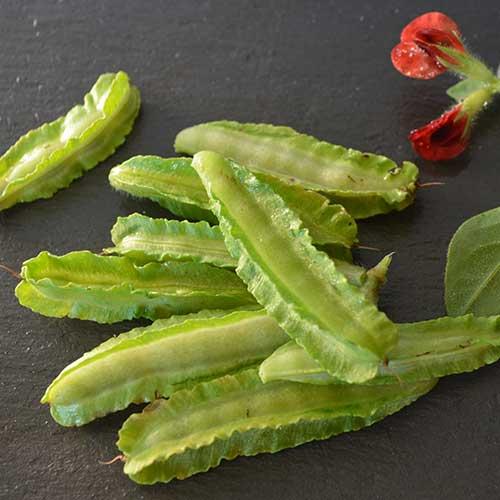 Pea, Asparagus