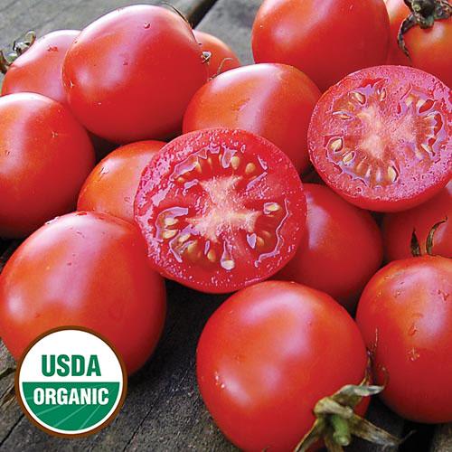 Tomato, Siberian