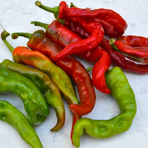 Pepper, Maules Red Hot