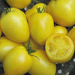 Tomato, Powers Heirloom