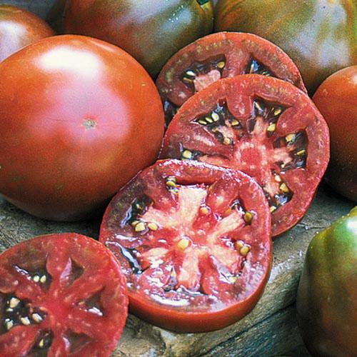 Tomato, Japanese Trifele Black