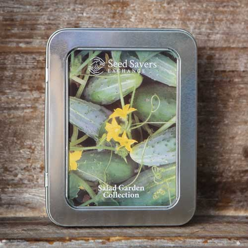 Salad Greens Garden Collection