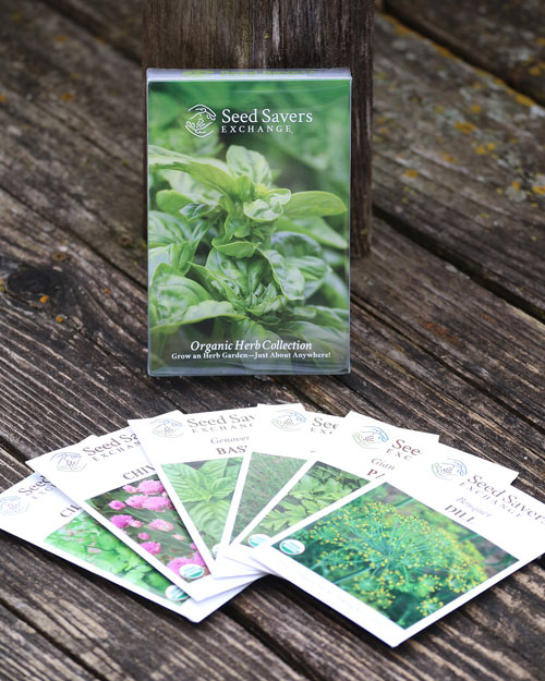Organic Herb Seed Collection