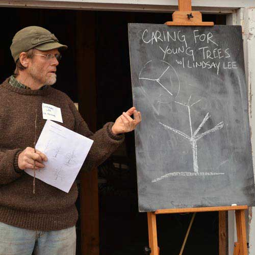 Apple Grafting and Orchard School - Tree Care