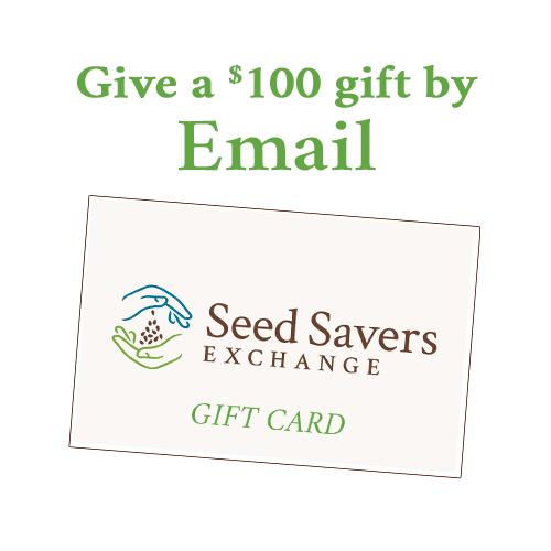 Online e-Card $100