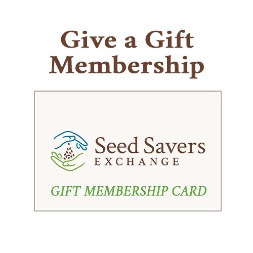 Gift Membership Card