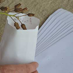 Kraft Self Sealing Seed Packets