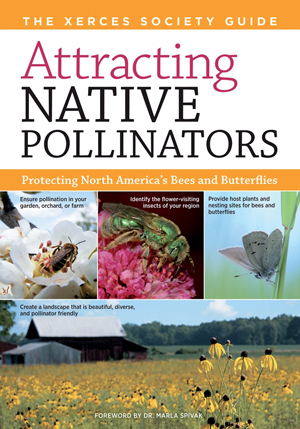 Attracting Native Pollinators
