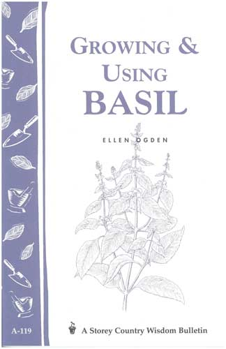 Growing and Using Basil