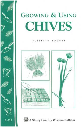 Growing and Using Chives