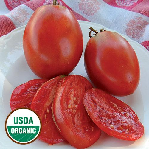 Transplant, Tomato-Amish Paste