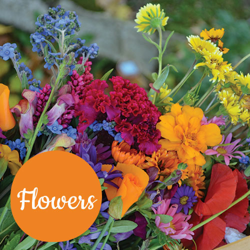 Heirloom Flowers