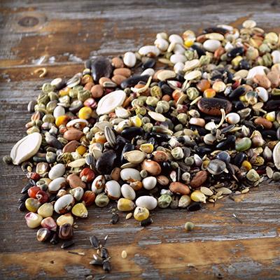 Share Seeds